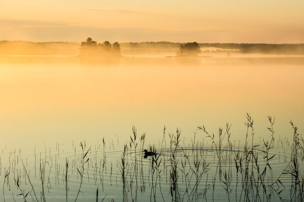 3-утренний туман-Dementievskiy_Ivan