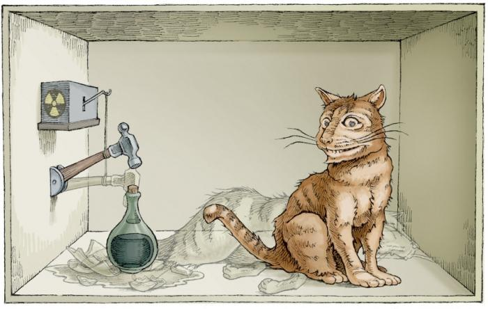 catsredinger