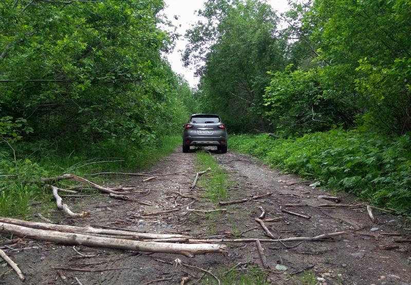 20 км двигались узкой тропой, зажатые меж лесных стен.