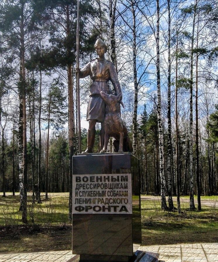 памятник из цветного гранита Каменногорск