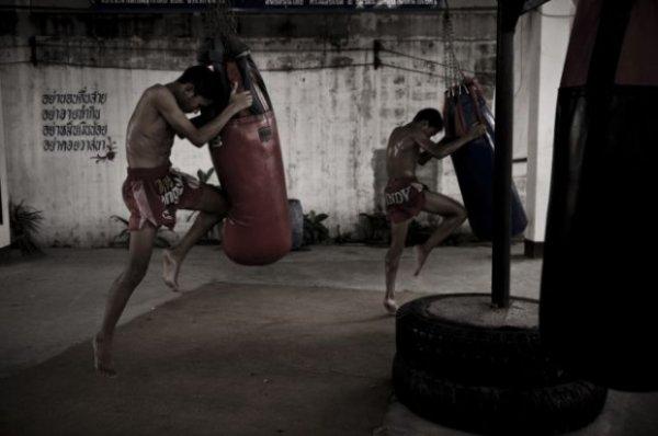 профессиональных боксеров.
