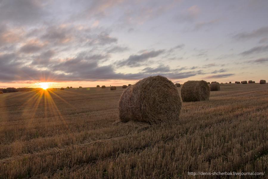Солнце всходит над полем, но радовало оно нас совсем не долго, спряталось в тучки и больше мы его не видели