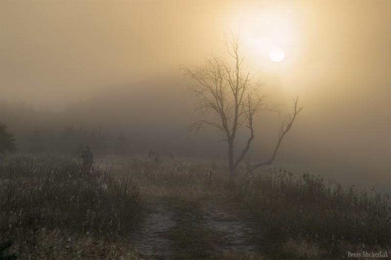 Мистический рассвет 2