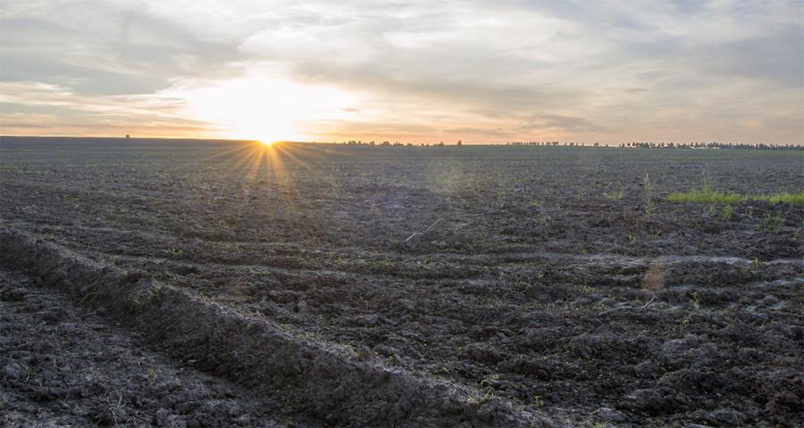Закат над просторами русских полей