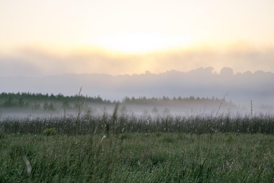 Рассвет на поле в долине реки Ока