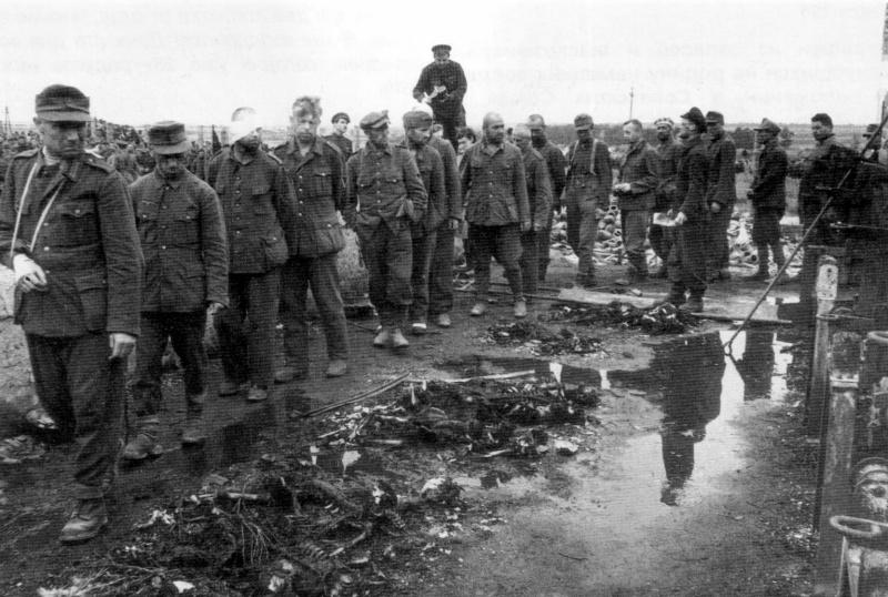 Немецких военнопленных проводят по концлагерю Майданек. Перед пленными на земле лежат останки узников лагеря смерти, так же видны печи крематория. Окраина польского города Люблин.