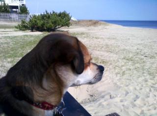 G @ the Beach :-)
