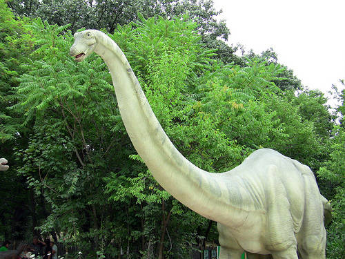 apatosaurusFL1