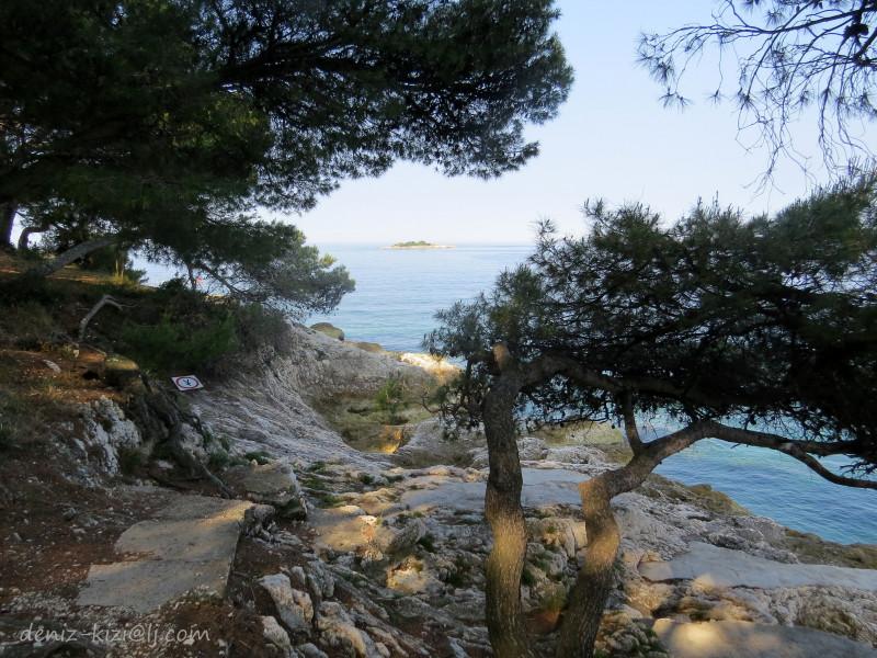 Очень нравилось сочетание пляжа и соснового леса. Как только начинало очень сильно жарить солнце, мы уходили в тень сосен загорать.