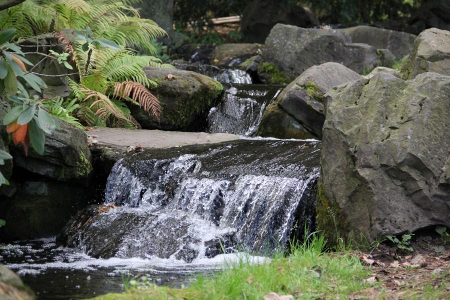Японский сад 366