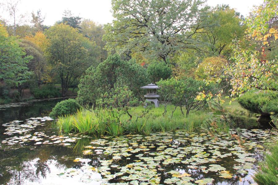 Японский сад 420