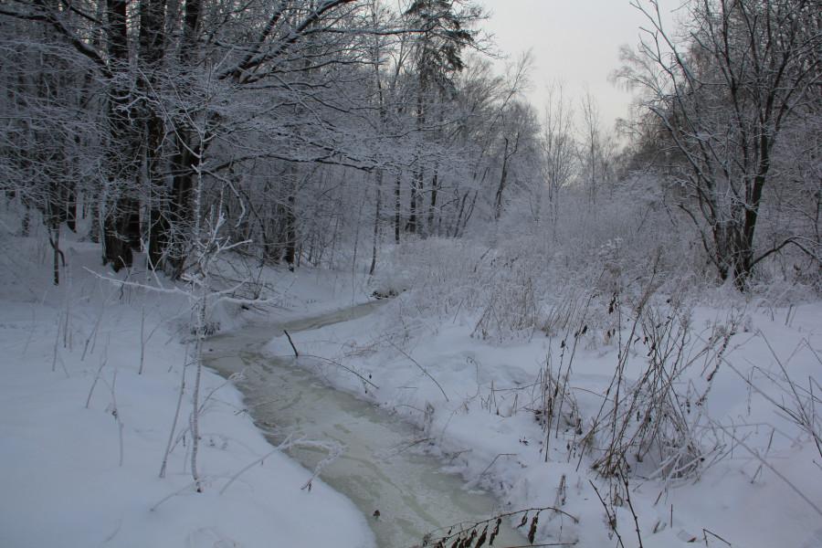 Мороз 538