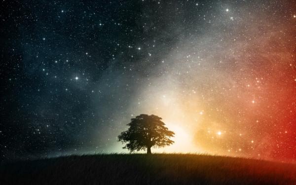 Nature_Other_Starlit_night_027655_