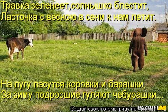1322998150_kotomatrix_26