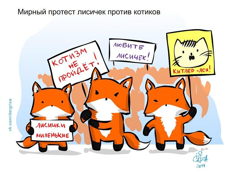 коты против лис скачать торрент - фото 3