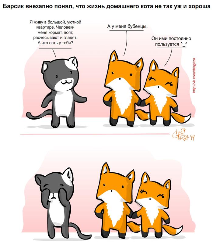 коты против лис скачать торрент - фото 5