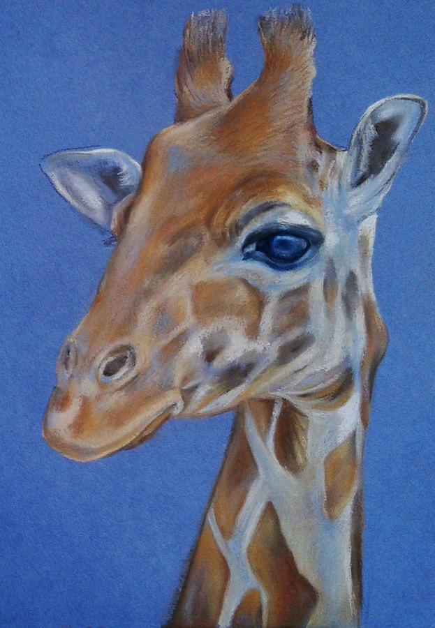 Pastel Giraffe