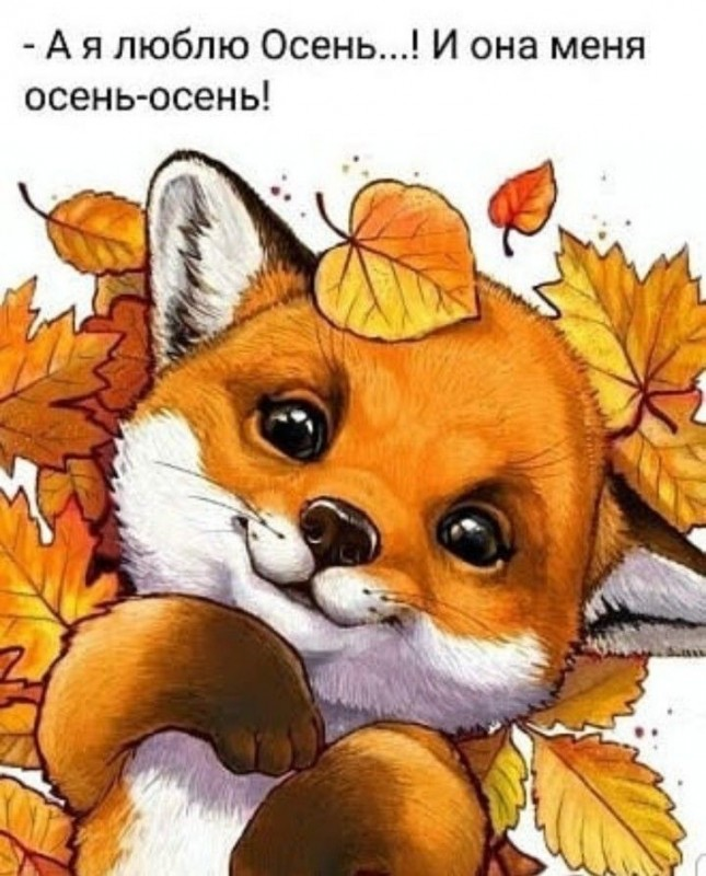 WhatsApp Image 2020-09-23 at 11.00.31