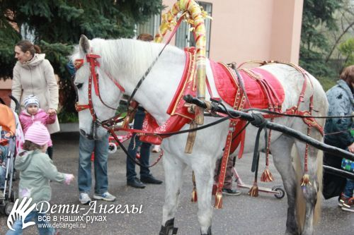 preview_IMG_1053