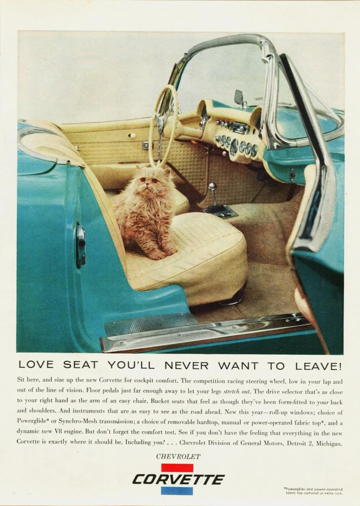 1956 Chevrolet Corvette _o