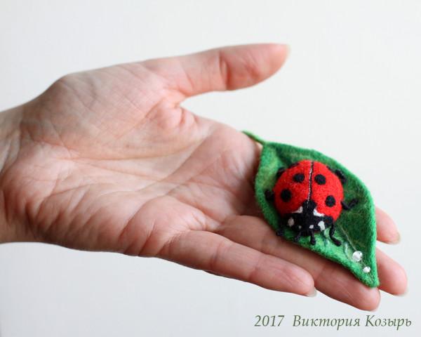 ladybug_6
