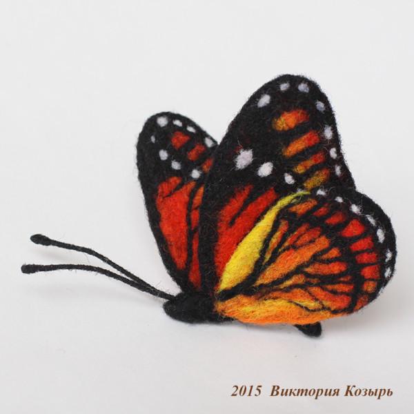 бабочка 800