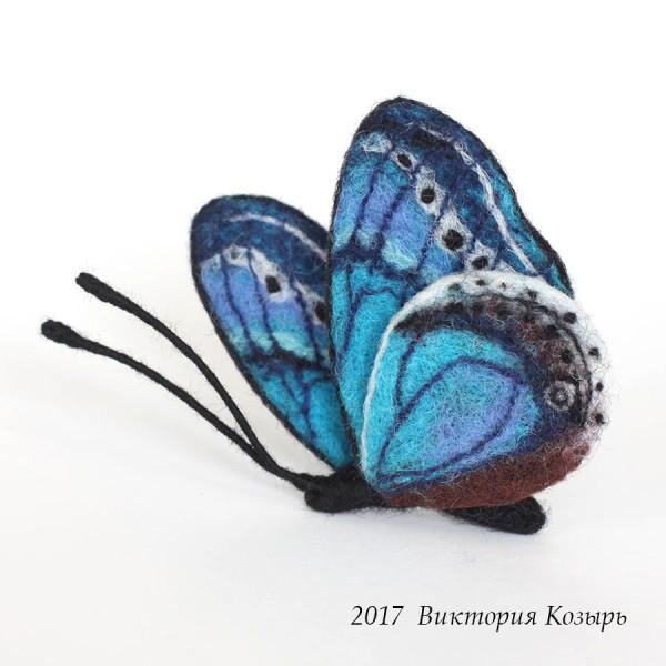 babochka_blue