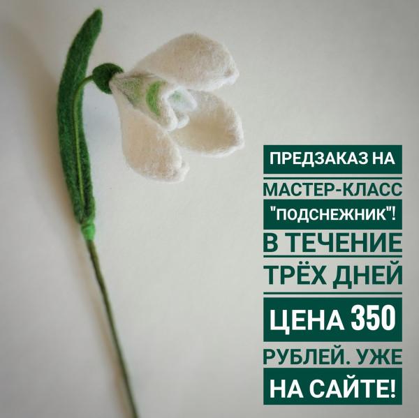 24784927_1539781549466656_9035489391734131345_o