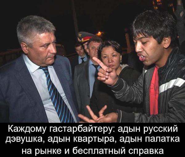 93719600_gasteruy_kachayut_prava