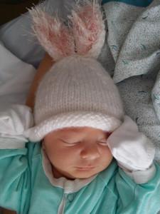 bunny g