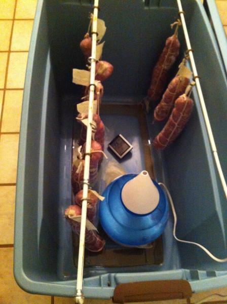 Ферментация холстейнера