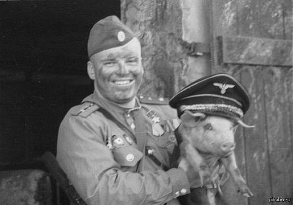 Русские и фашисткое сало