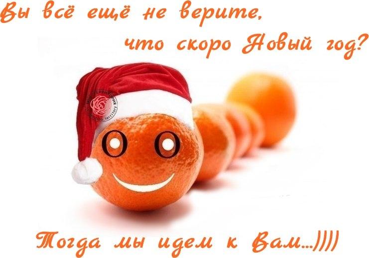 Доброе утро сегодня 29 декабря картинки прикольные ждем новый год, днем рождения