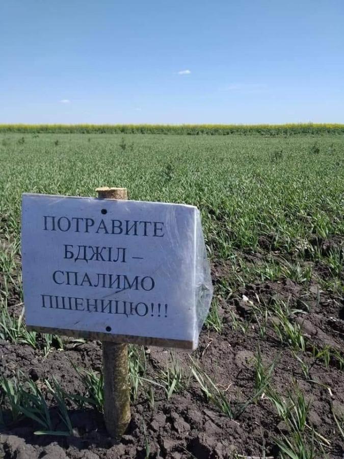 Новости европейского агробизнеса