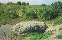 Синь Камень