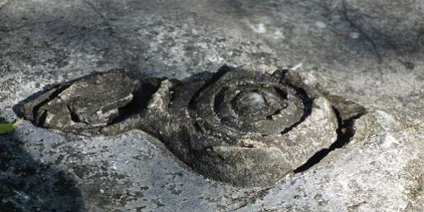 Китайские-каменные-цветы3