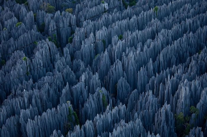 stone_forest_of_madagascar_03
