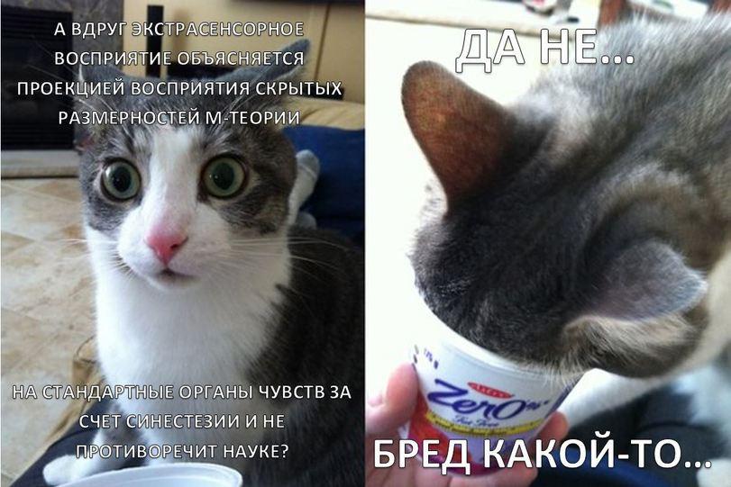 _SxjiXzC1fs