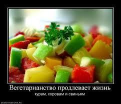 вегетарианство 3