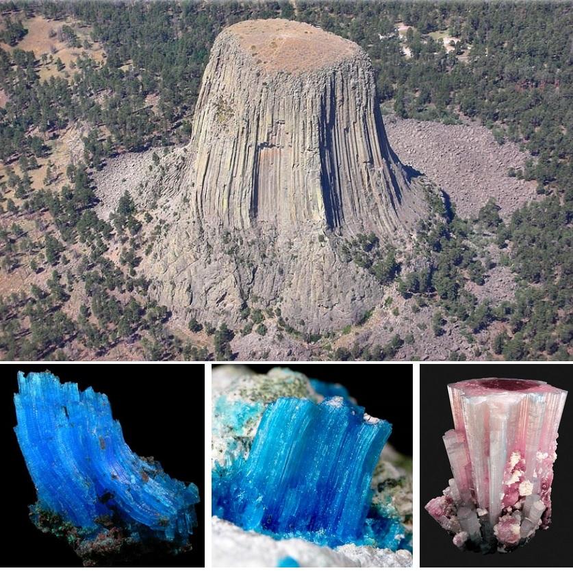 Земля рудник: кремниевые деревья