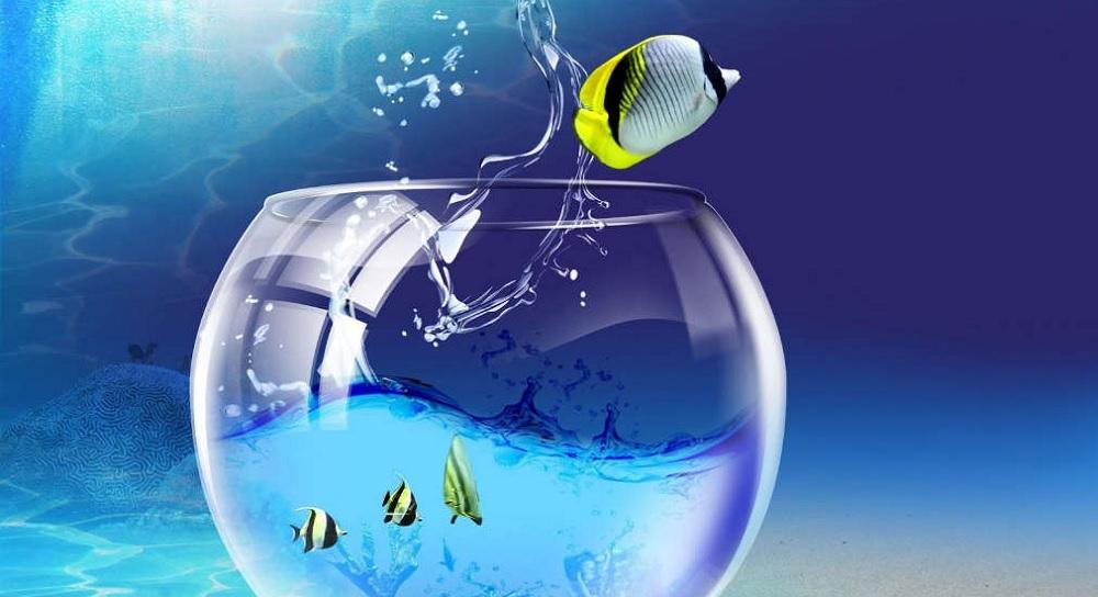 Трансформация личности, магические способности и трудности пути