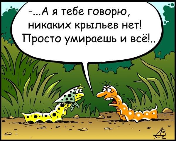 религия-гусеницы-крылья-песочница-655862