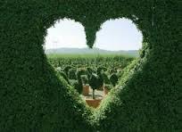 Открытого Сердца