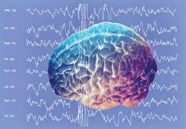 частота мозговых волн