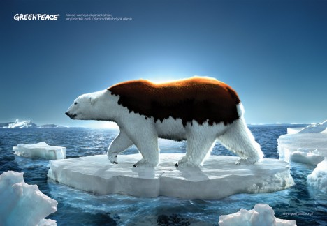 Greenpeace-bear_thumb