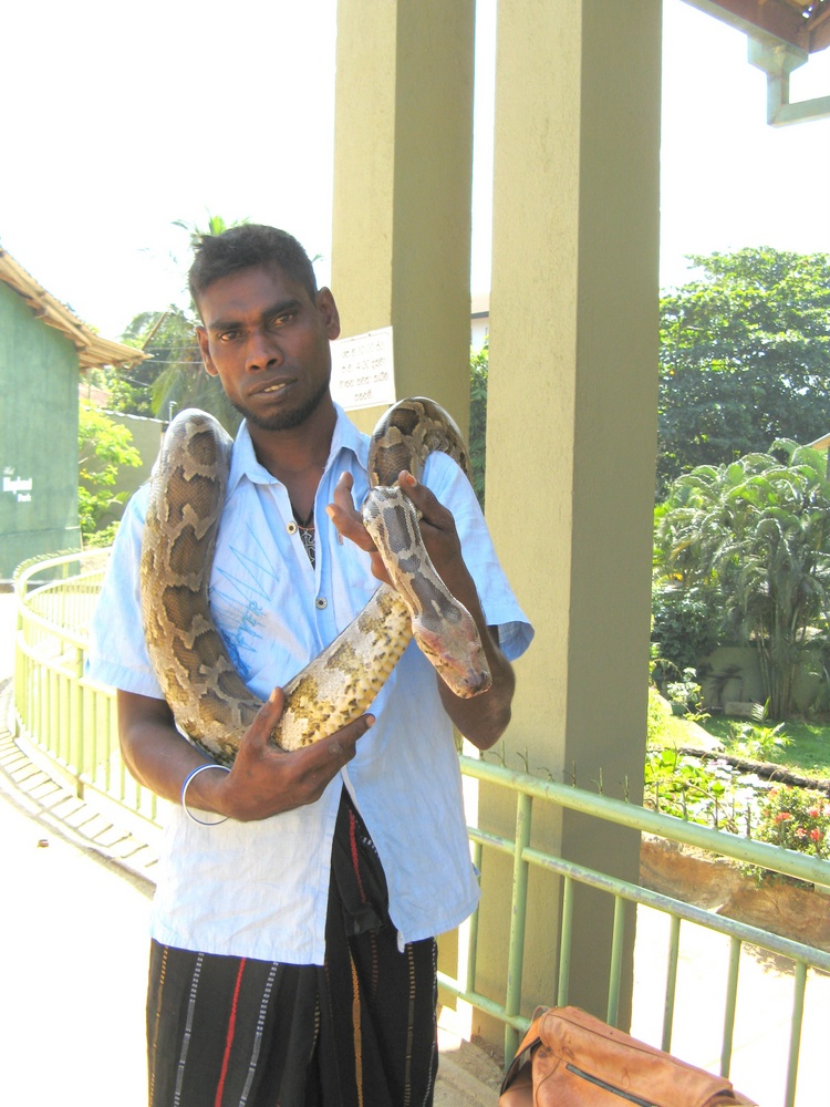 SriLanka 076