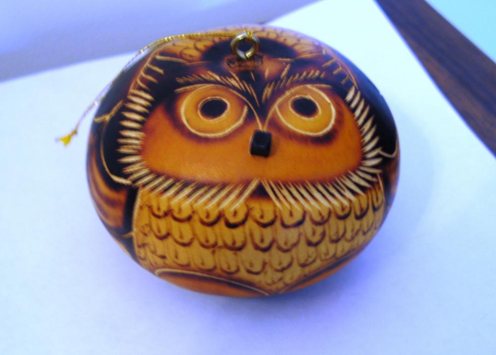 Owl02 024