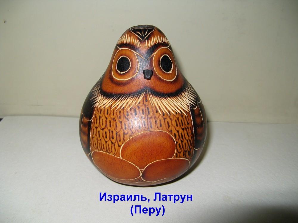 Owls 064