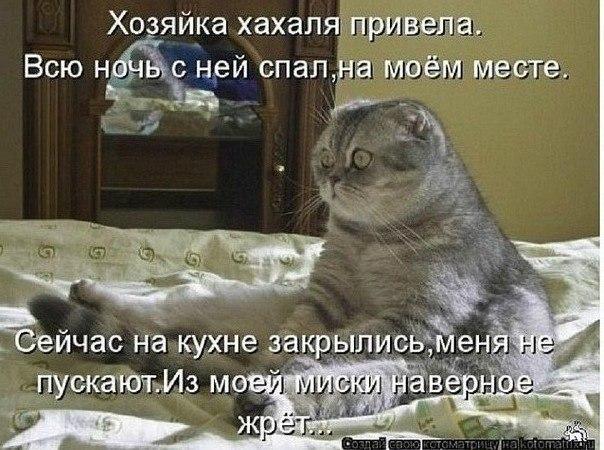 Для ЖЖ ZZI9YyYC6nQ