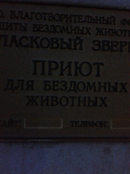 20140201_183136